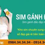 """Sim gánh đảo 3 """"Ngon – bổ – rẻ"""", phù hợp túi tiền với đại đa số người dân Việt Nam"""